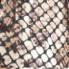 Brown snake (2)